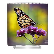 Monarch With Sunflower Shower Curtain