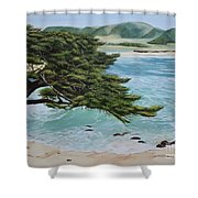 Monastery Beach Shower Curtain