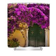 Monastery Door Shower Curtain