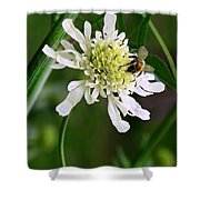 Monet's Garden Bee. Giverny Shower Curtain