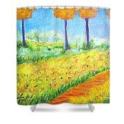 Monet's Garden Path Shower Curtain