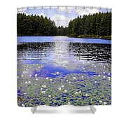 Monet's Prelude Shower Curtain