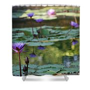 Monet's Waterlily Pond Number Two Shower Curtain