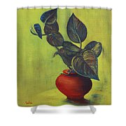 Money Plant - Still Life Shower Curtain