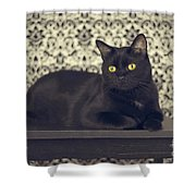 Mongo The Robust Cat Shower Curtain