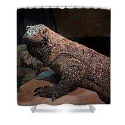 Monitor Lizard Shower Curtain
