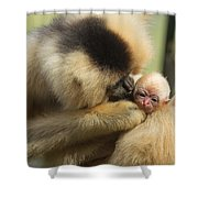 Monkey Mother Shower Curtain