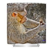 Monkey Playing With Tail Shower Curtain