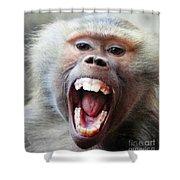 Monkey's Smile Shower Curtain