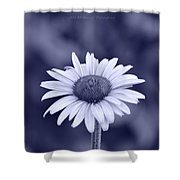 Monochrome Aster Shower Curtain
