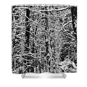 Monochrome Winter Wilderness Shower Curtain