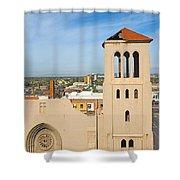 Monroe Street Abbey Shower Curtain
