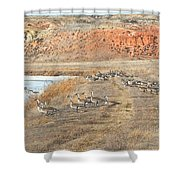 Montana Spring Thaw Shower Curtain