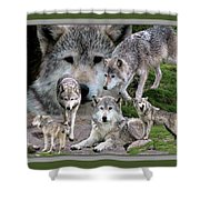 Montana Wolf Pack Shower Curtain