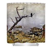 Monterey Mist Shower Curtain