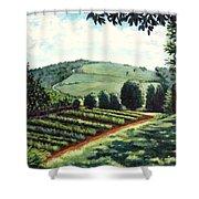 Monticello Vegetable Garden Shower Curtain