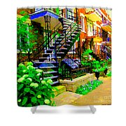 Montreal Staircases Verdun Stairs Duplex Flower Gardens Summer City Scenes Carole Spandau Shower Curtain