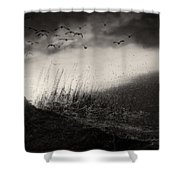 Moody Sunrise With Grasses And Birds Shower Curtain