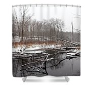 Winter's Moods Shower Curtain