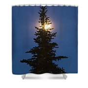 Moon Behind Spruce Shower Curtain