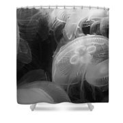 Moon Jellyfish Shower Curtain