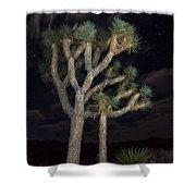 Moon Over Joshua - Joshua Tree National Park In California Shower Curtain