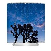 Moon Over Joshua - Joshua Trees During Sunrise In Joshua Tree National Park. Shower Curtain
