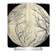 Moon Tree Shower Curtain