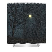 Moon Tree Shower Curtain