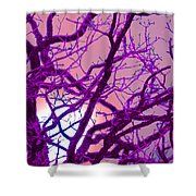 Moon Tree Pink Shower Curtain by First Star Art