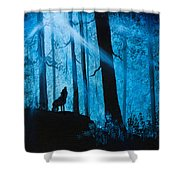 Moonlight Serenade Shower Curtain by C Steele