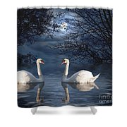 Moonlight Swim Shower Curtain