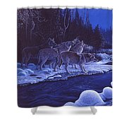 Moonlight Visitors Shower Curtain