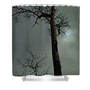 Moonlit Marks On A Ground Glass Canvas  Shower Curtain