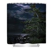 Moonlit Treescape Shower Curtain