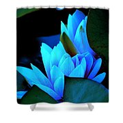 Moonlit Waterlilies Shower Curtain