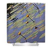 Moore State Park Lily Pads 1 Shower Curtain