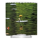 Moore State Park Lily Pond 2 Shower Curtain