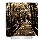 Moores Creek Battlefield Nc Swamp Walk  Shower Curtain