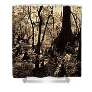 Moores Creek Swamp Shower Curtain