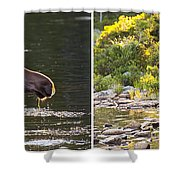 Moose And Baby 5 Shower Curtain
