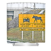 Moose Crossing Shower Curtain