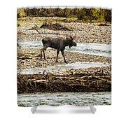 Moose Crossing River No. 1 - Grand Tetons Shower Curtain