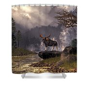 Moose In The Adirondacks Shower Curtain