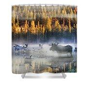 Moose Lake Shower Curtain