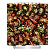 Mop By Rafi Talby Shower Curtain