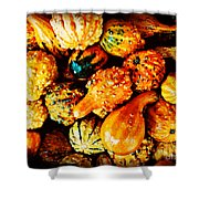 More Beautiful Gourds - Heralds Of Fall Shower Curtain