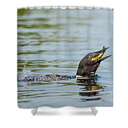 More Than A Mouthful Shower Curtain