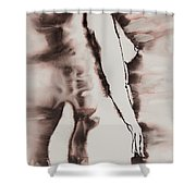 More Than Series No. 1384 Shower Curtain