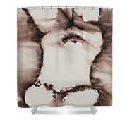 More Than Series No. 1397 Shower Curtain